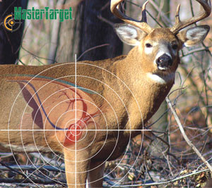 photograph about Printable Deer Targets referred to as Educate! - Web site 2 - Deer Looking - Nova Scotia On the lookout